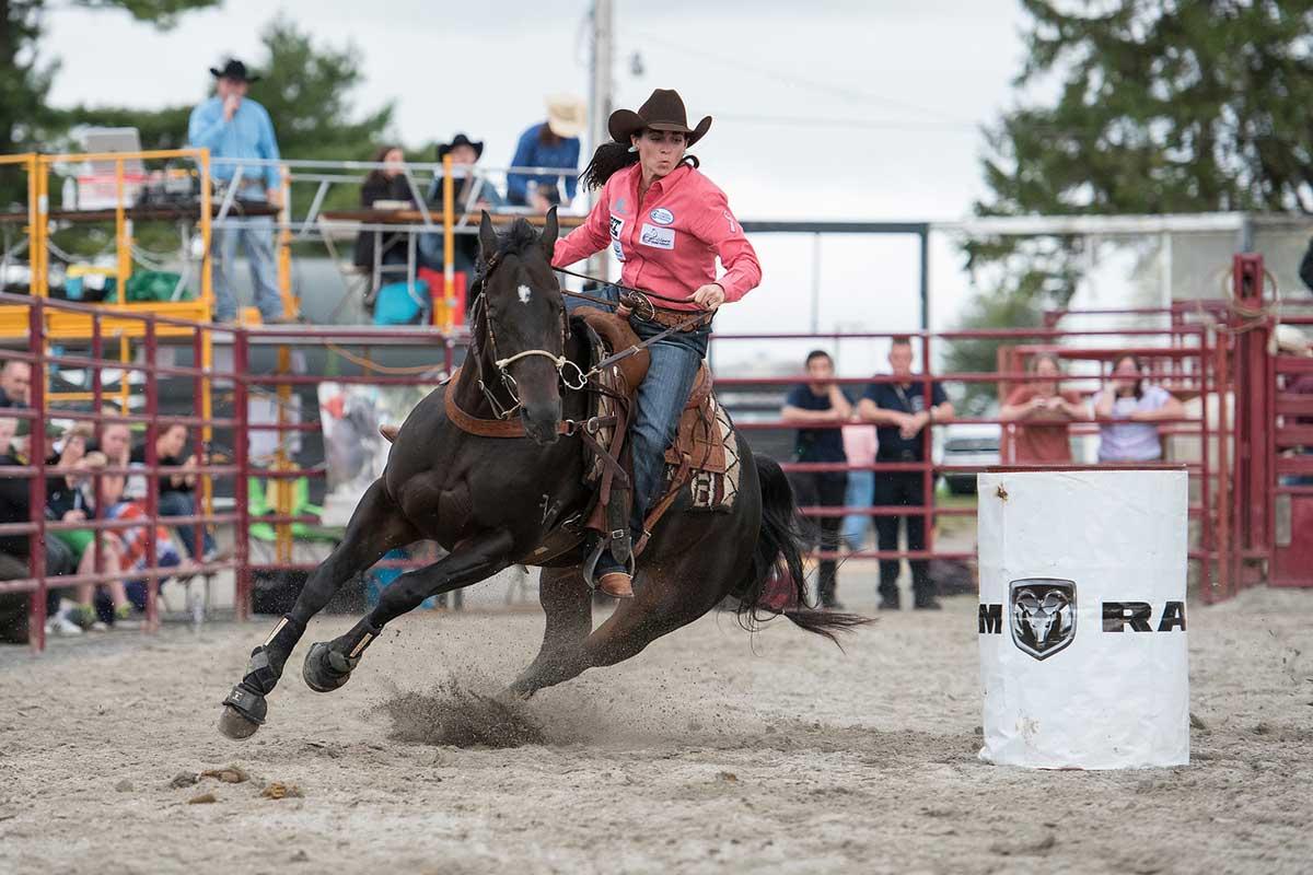 Western Rodeo: Bronc Riding, Calf Roping, Beautiful Horses